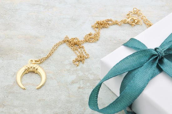 Gold Plated Horn Necklace for layered necklace set